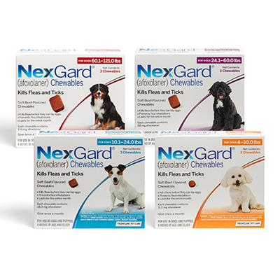 Brooklyn Roots Veterinary Hospital Home Nexgard Chewables